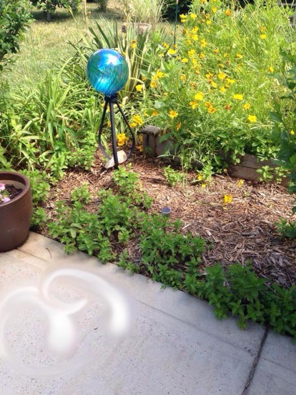 my-garden-fairy