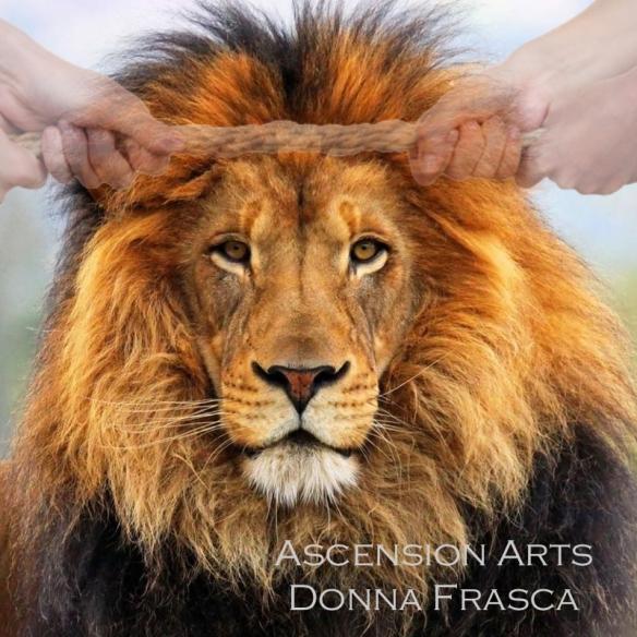 lions-gate-energy