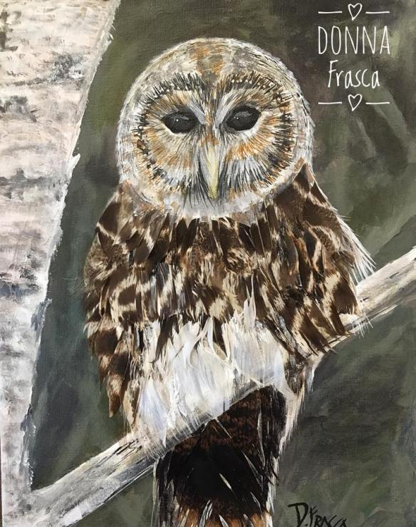 owl painting by donna frasca